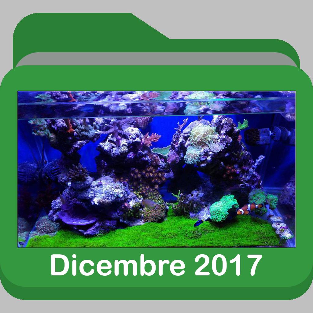 Dicembre2017