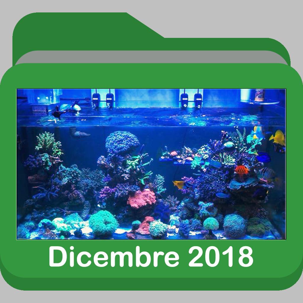 Dicembre2018