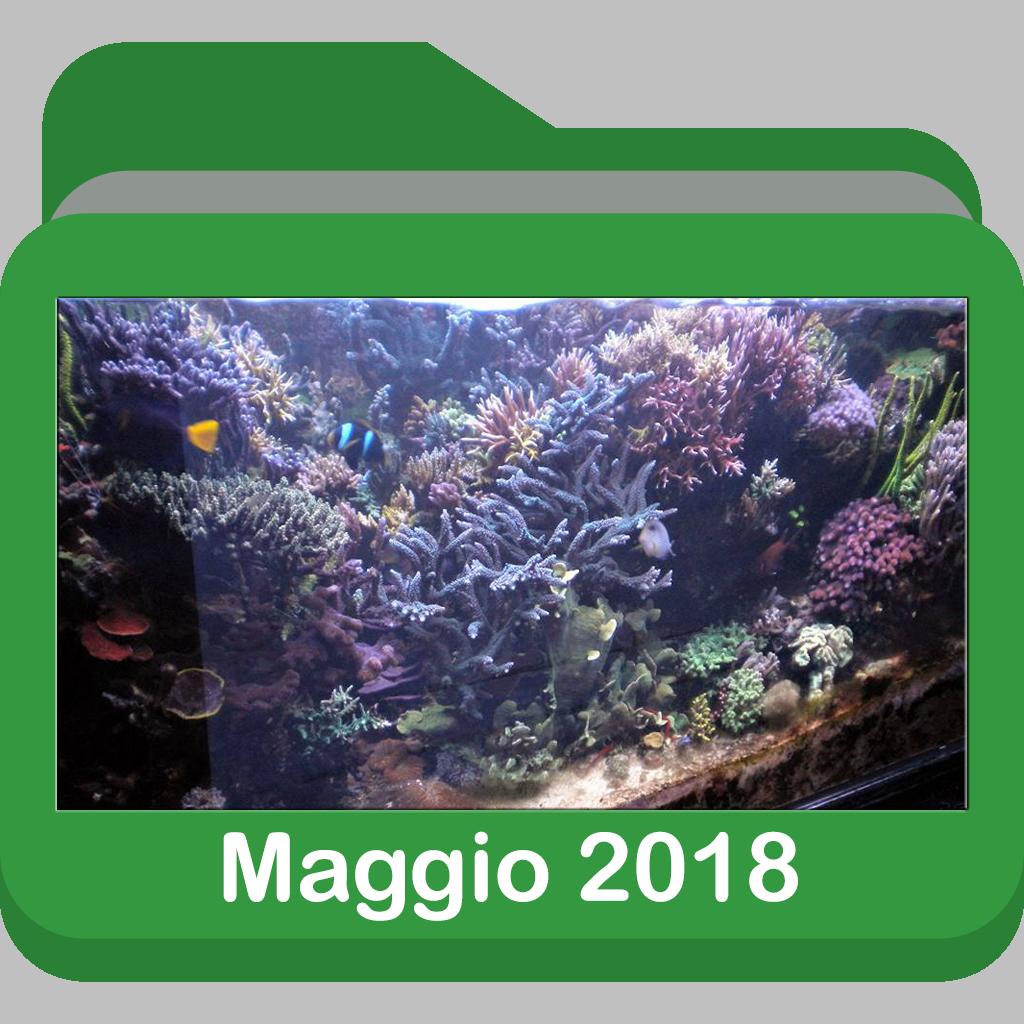 Maggio2018