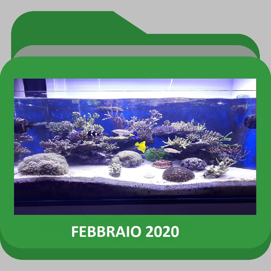 FEBBRAIO2020