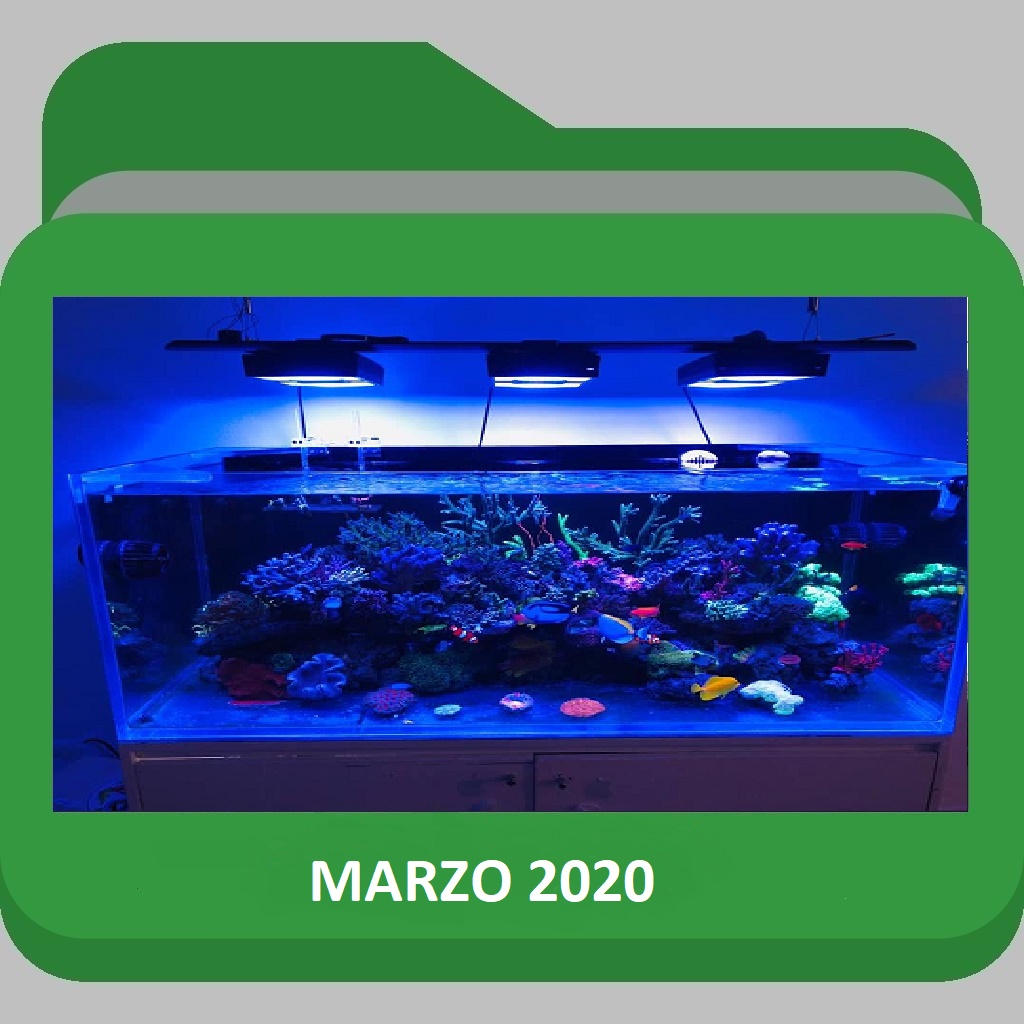 MARZO2020