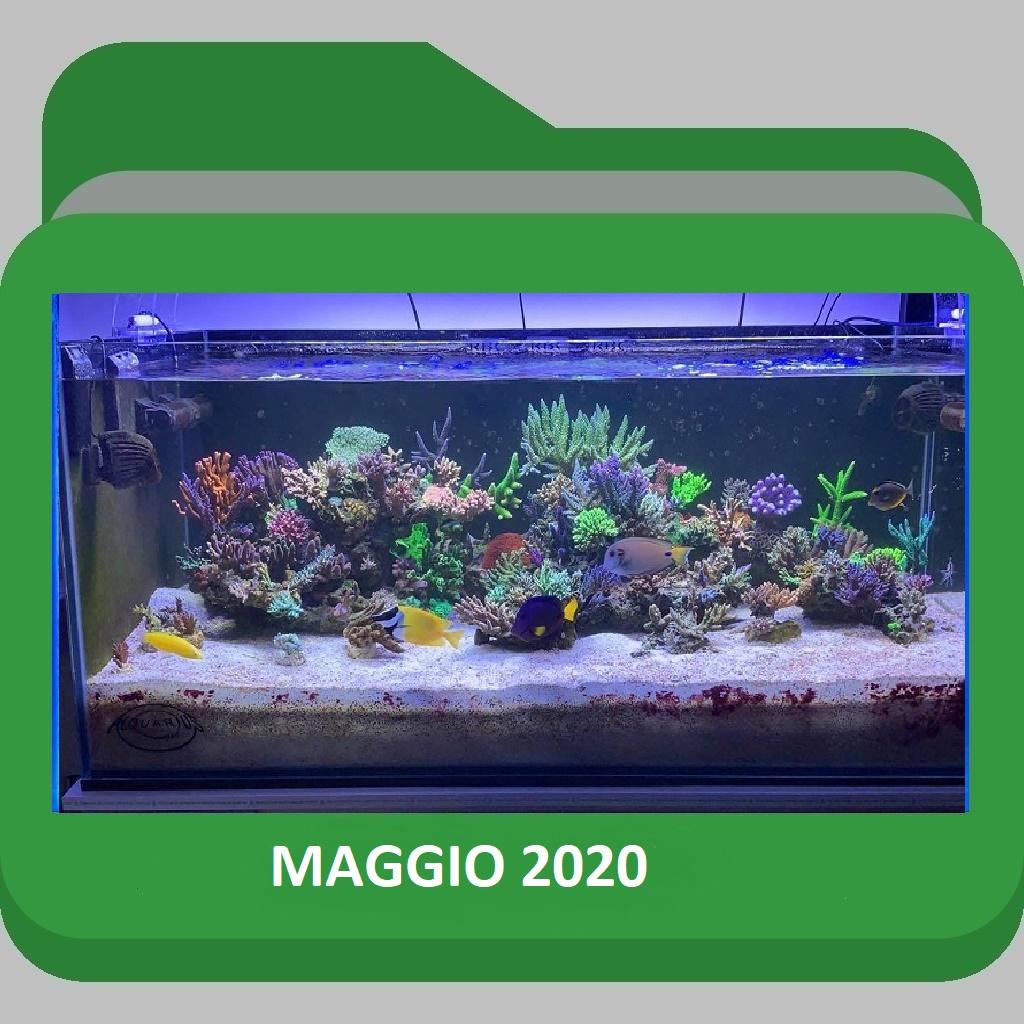 ScoglioMaggio2020