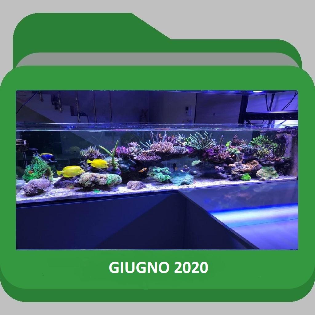 Giugno2020