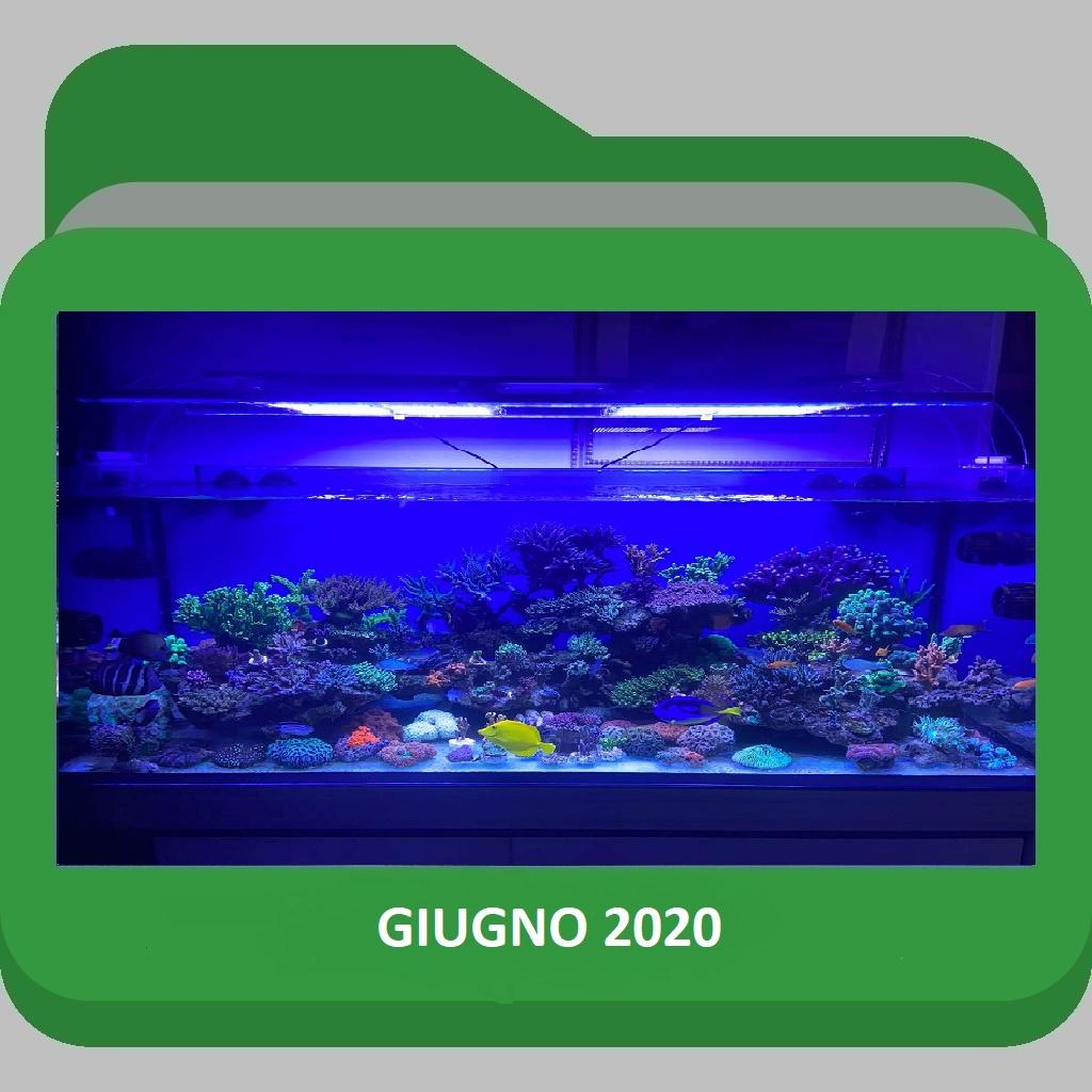 ScoglioGiugno2020