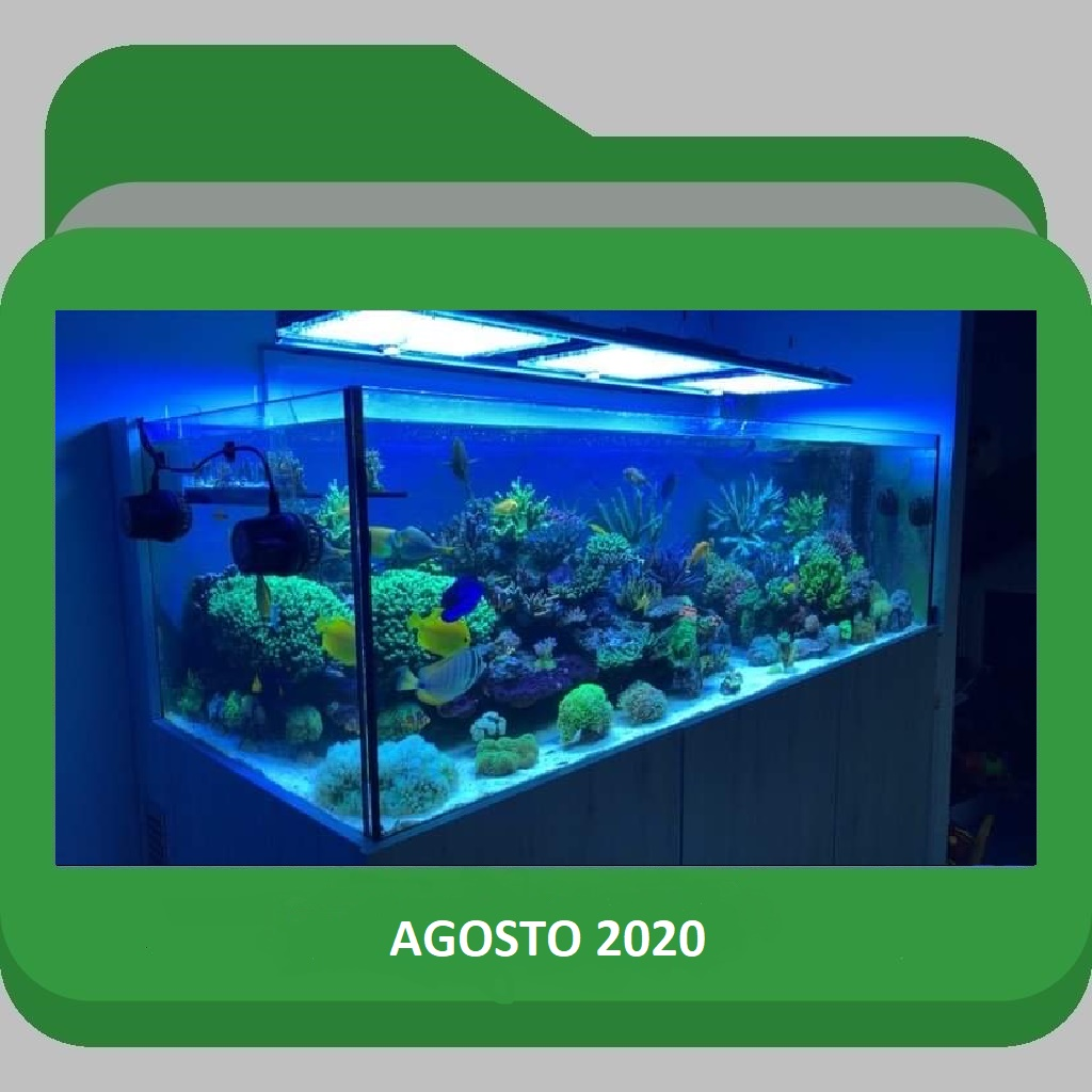ScoglioAgosto2020