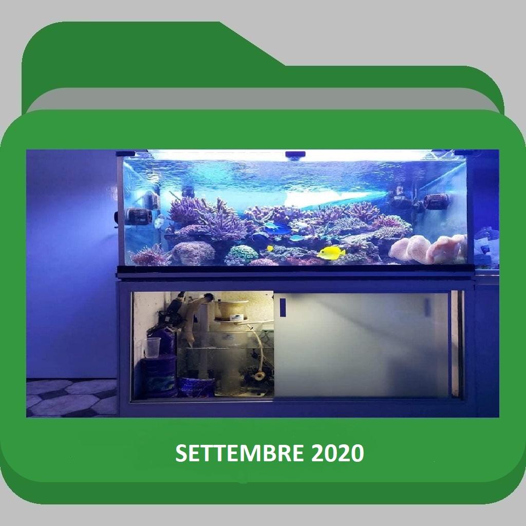 AcquarioSettembre 2020