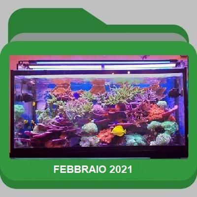 Febbraio_2021
