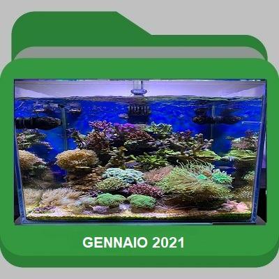 Gennaio_2021