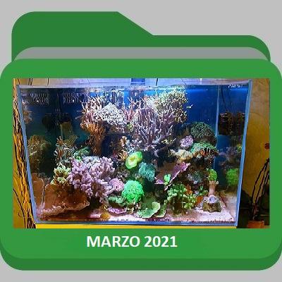 Marzo_2021