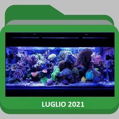 Luglio_2021